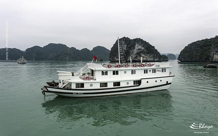 Bhaya-Cruise-5