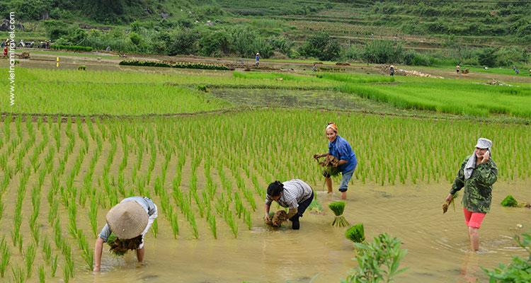Vietnam-Caobang-1