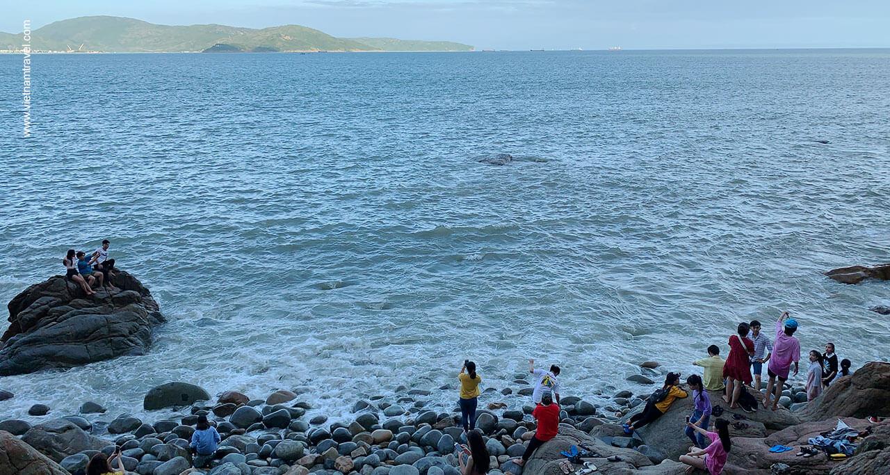 Beach-Vacation-in-Quy-Nhon-5