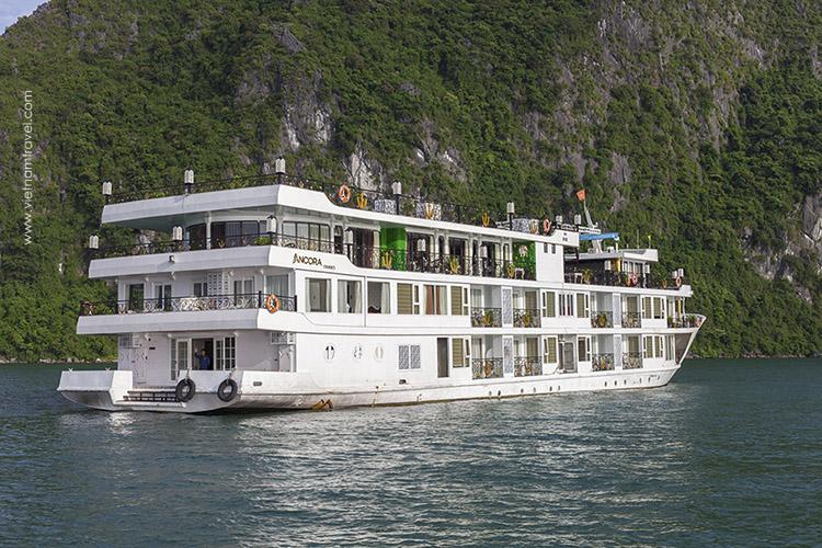 Ancora-Cruise-1
