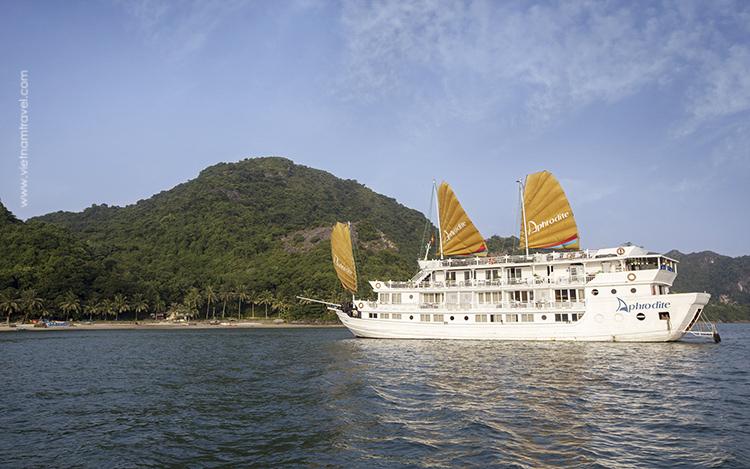 Aphrodite-Cruise-1