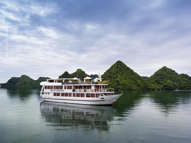 Maya-Cruise-1