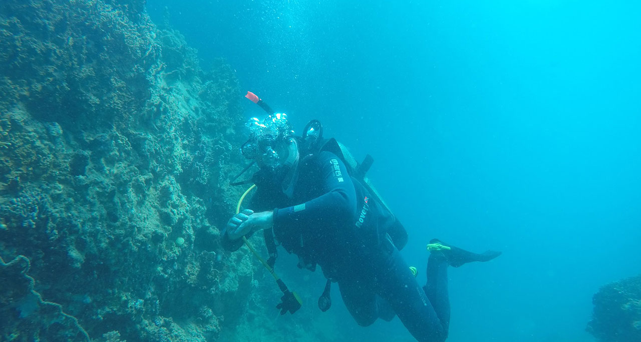 Nha-Trang-Snorkeling-Tour-6