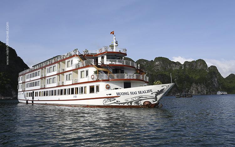 Sealife-Cruise-4