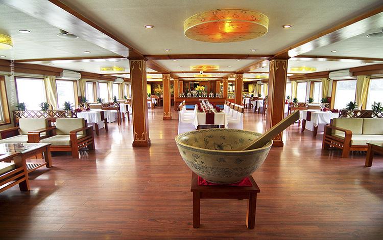 Sealife-Cruise-5