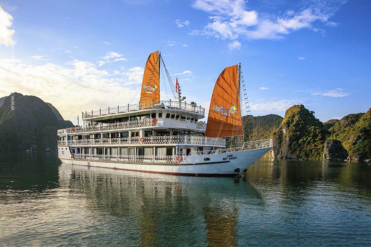 Unicharm-Cruise-11