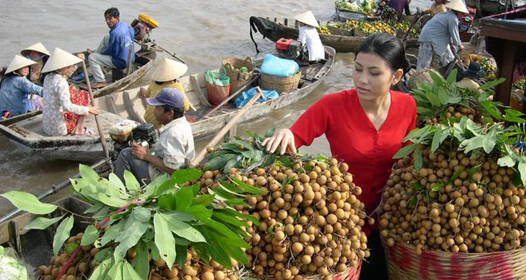 discover-cai-be-floating-market-and-tan-phong-island-from-ho-chi-minh-in-ho-chi-minh-city-301812