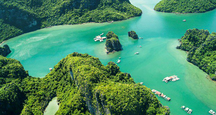 scenic-sightseeing-to-halong-bay-and-lan-ha-bay-by-seaplane-1