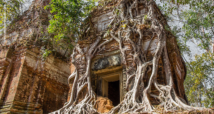 Day 11: Ho Chi Minh City – Fly to Siem Reap.