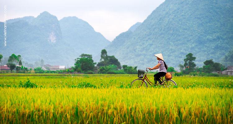 Day 1: Hanoi – Night train to Lao Cai.