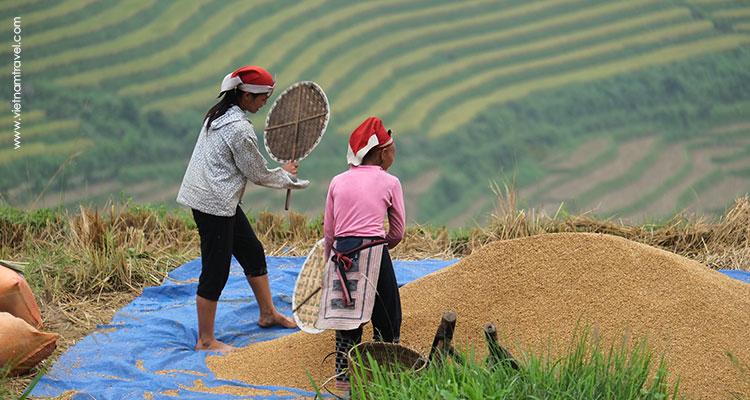 Day 4: Sapa – Y Linh Ho – Lao Chai – Ta Van.