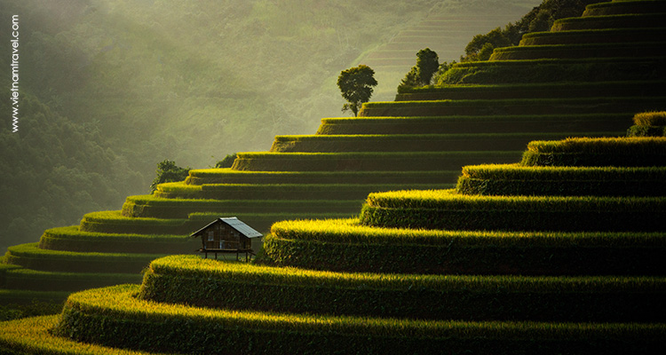 Vietnam Tours from Portugal
