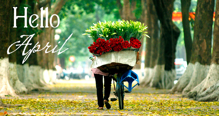What to do in Vietnam in April?