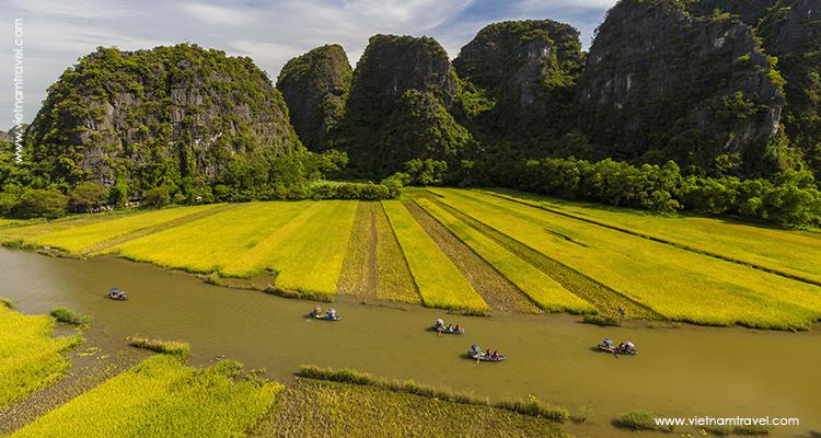 ngo dong river, ninh binh vietnam