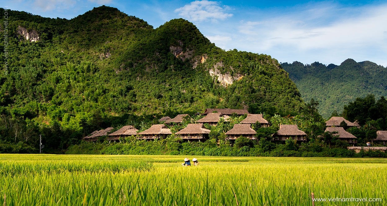 Vietnam tours from Brazil