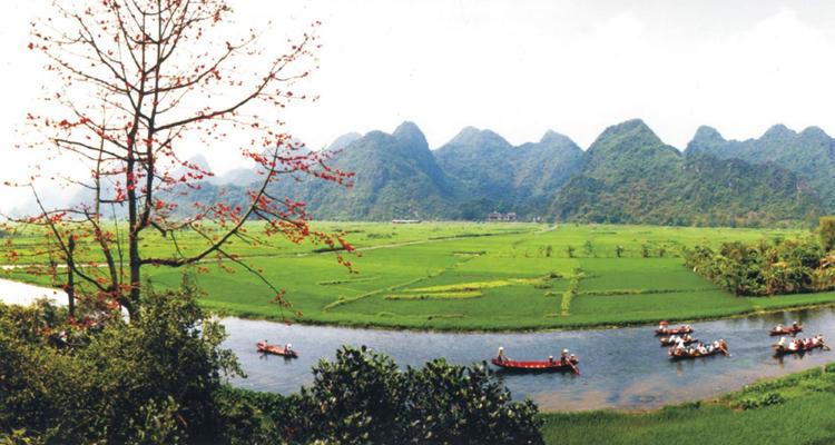 Festivals in Vietnam in March