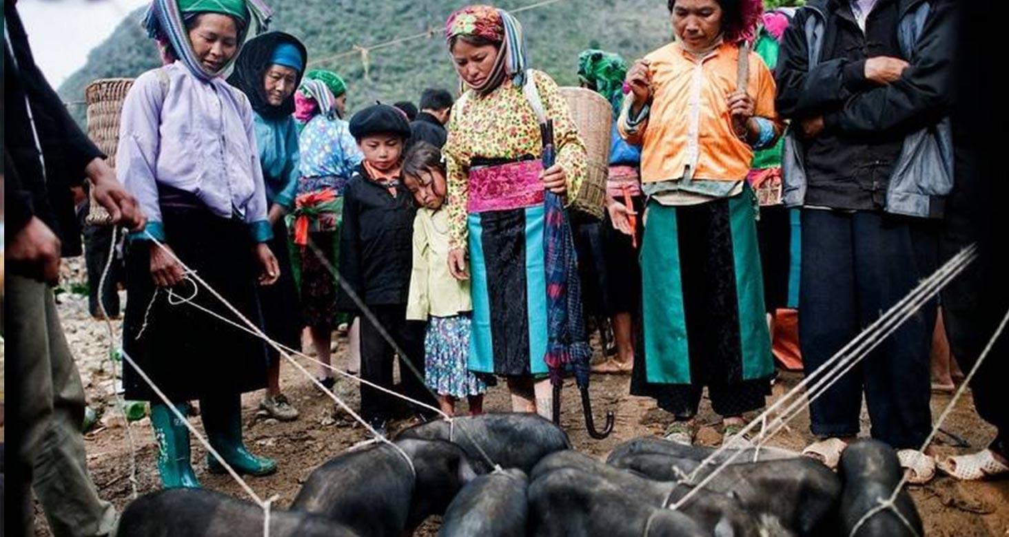 Hill Tribe Markets in Quan Ba, Ha Giang