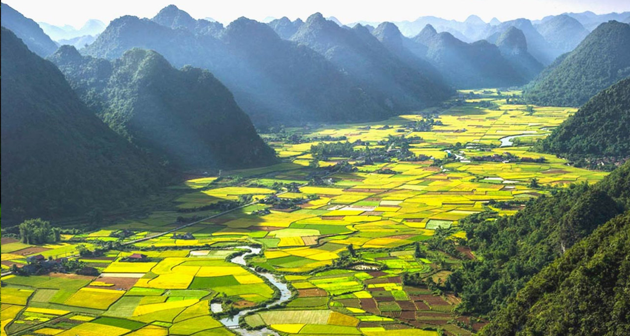 Rice fields sit within the immense Bac Son Valley, serving to create poetic and peaceful scenery