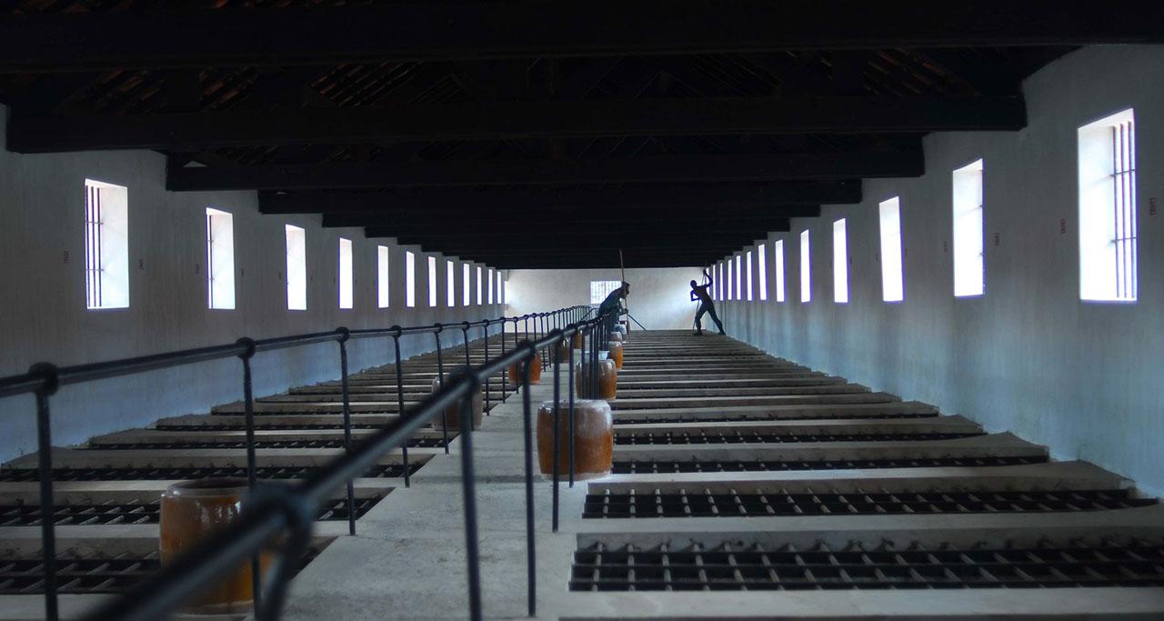Con-Dao-Historical-Prison-Tour-7