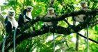 Cuc-Phuong-National-Park-10