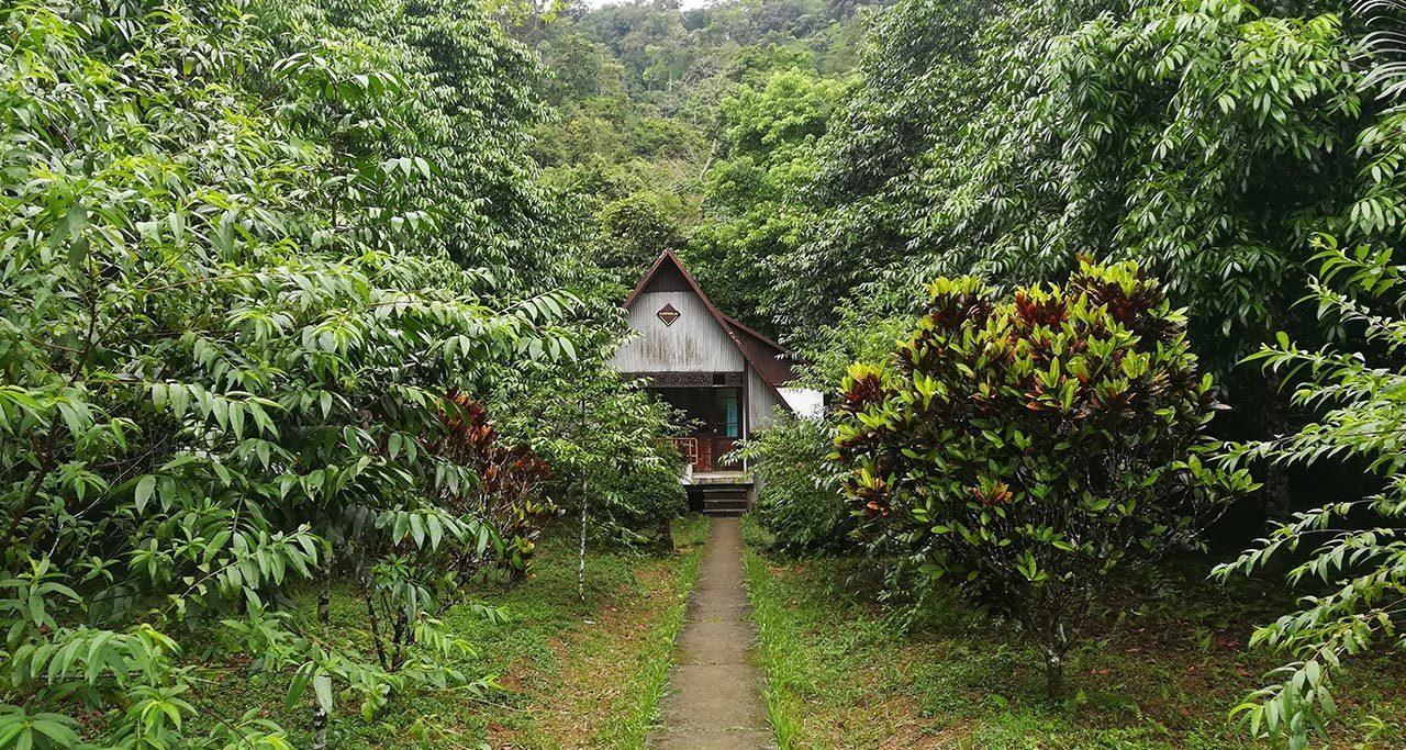 Cuc-Phuong-National-Park-3