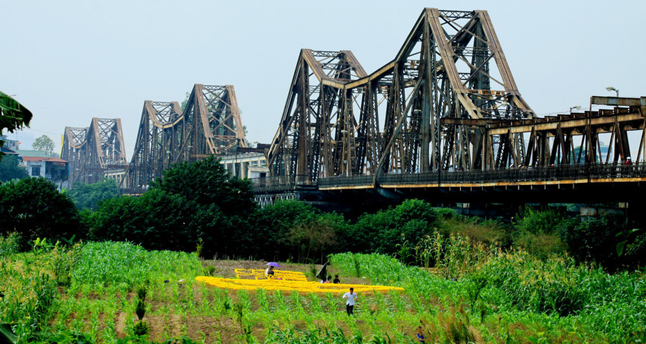 Agriculture activities under the bridge