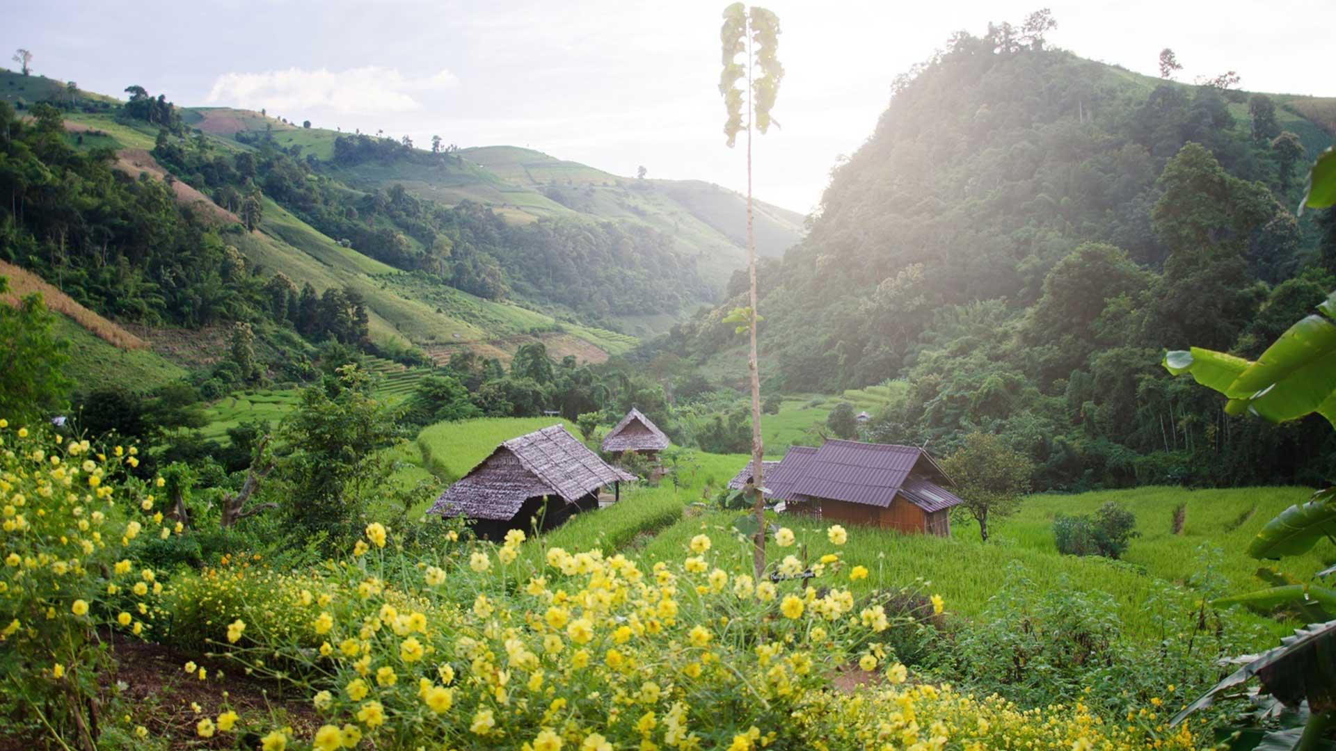 Day 2: Sapa Trekking – Homestay in Ta Van.