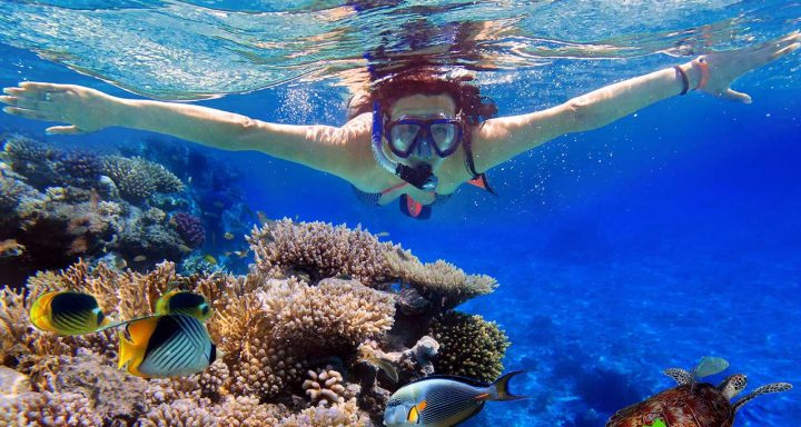 Snorkeling to admire marine life is a worthy experience in Phu Quoc island