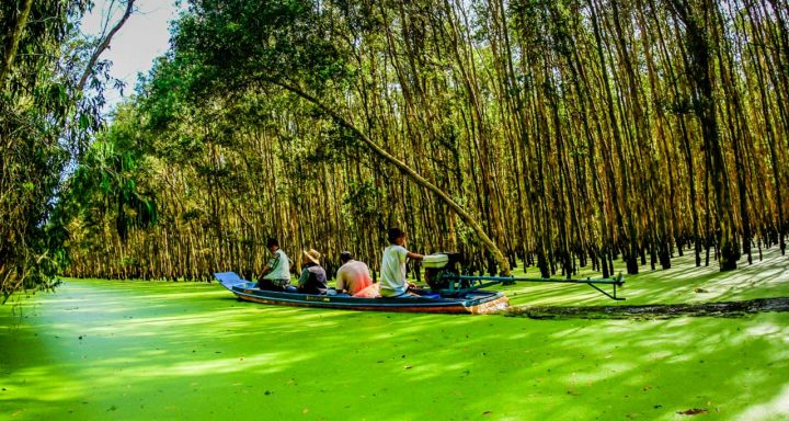 People using motorboat to explore Tra Su Forest