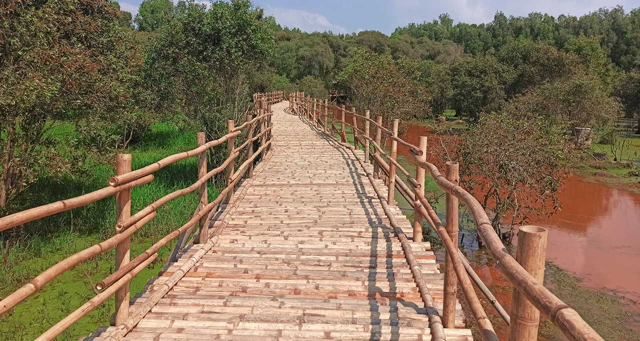 wooden-bridge-tra-su-an-giang-1