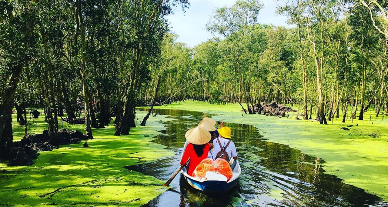 The beauty of Tra Su Cajuput Forest in floating water season