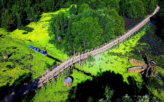 Vietnam's Longest Bamboo Bridge
