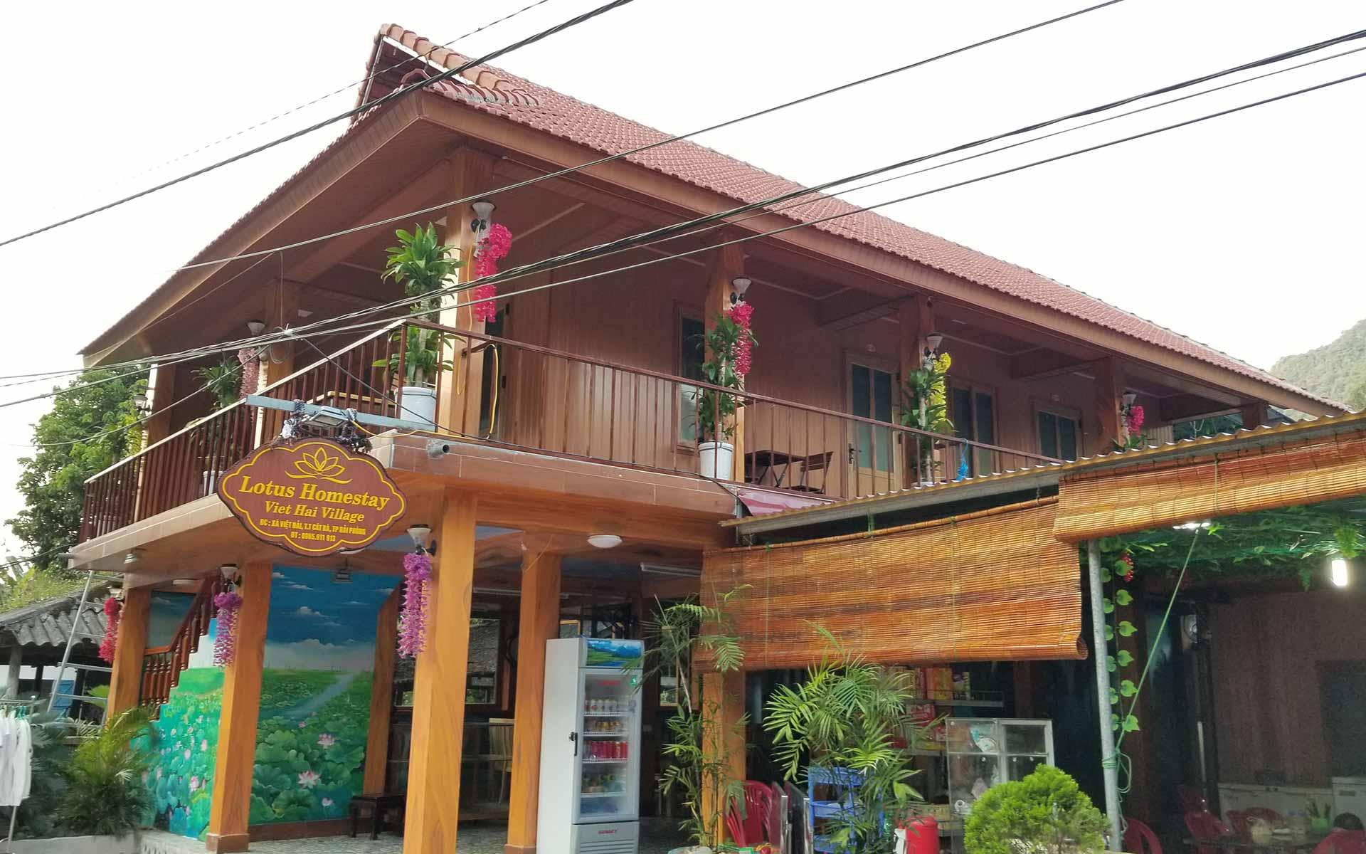 Lotus homestay at Viet Hai village