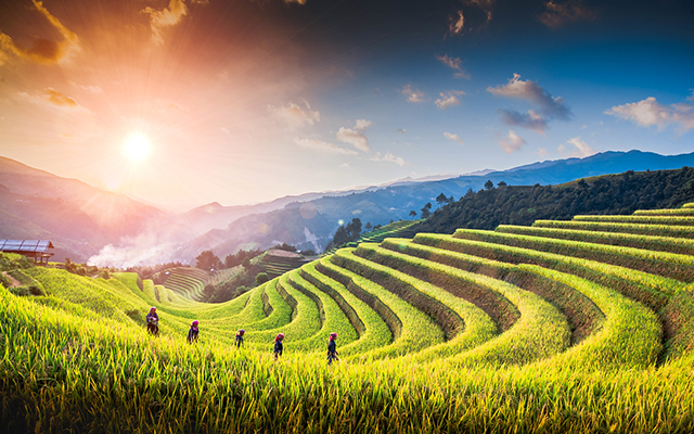 Mu Cang Chai  Overview