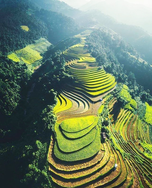 Rice terraces on the hillsides in Mu Cang Chai