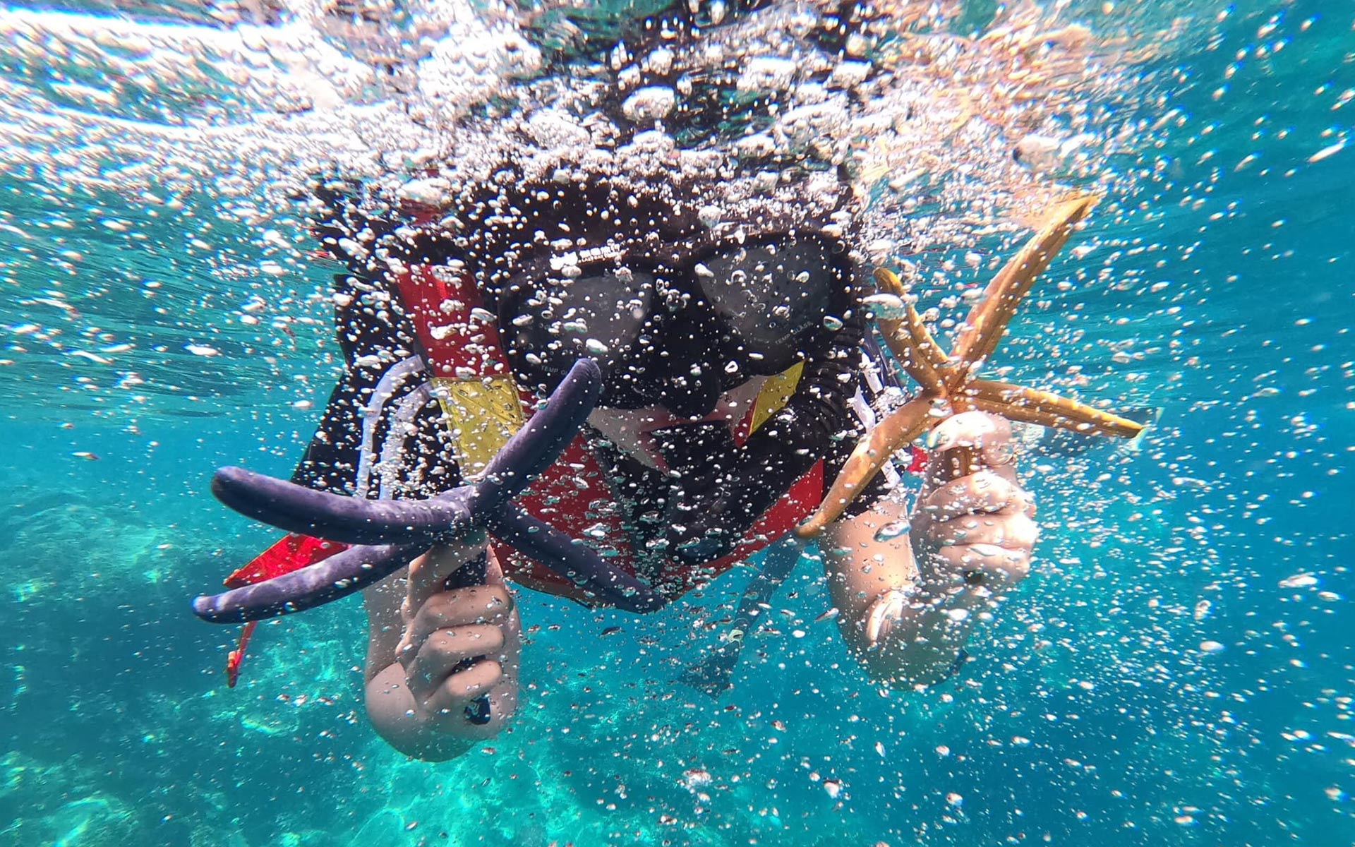 Snorkeling and Scuba Diving - Unique things to do in Nha Trang