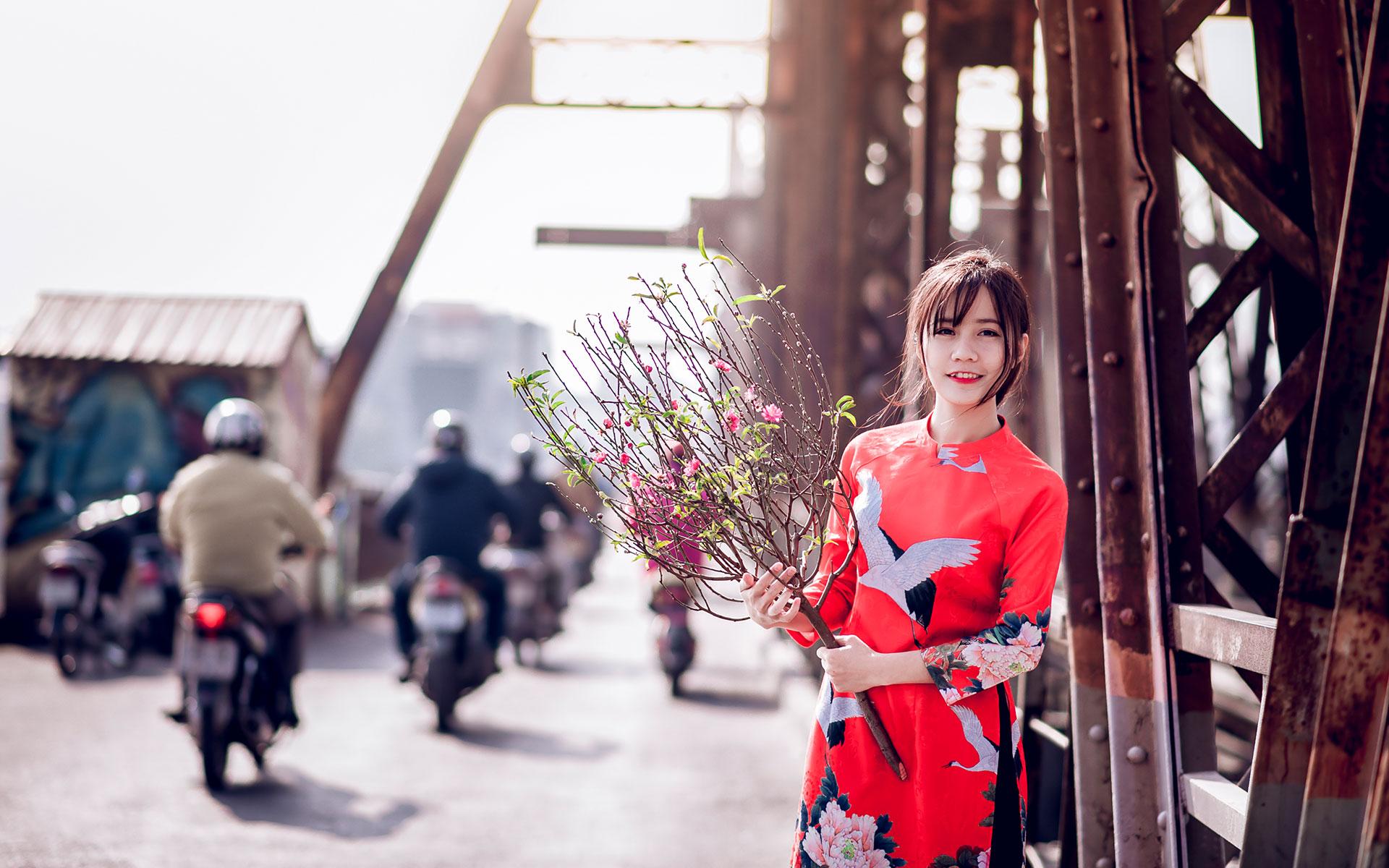 traditional dress (ao dai)