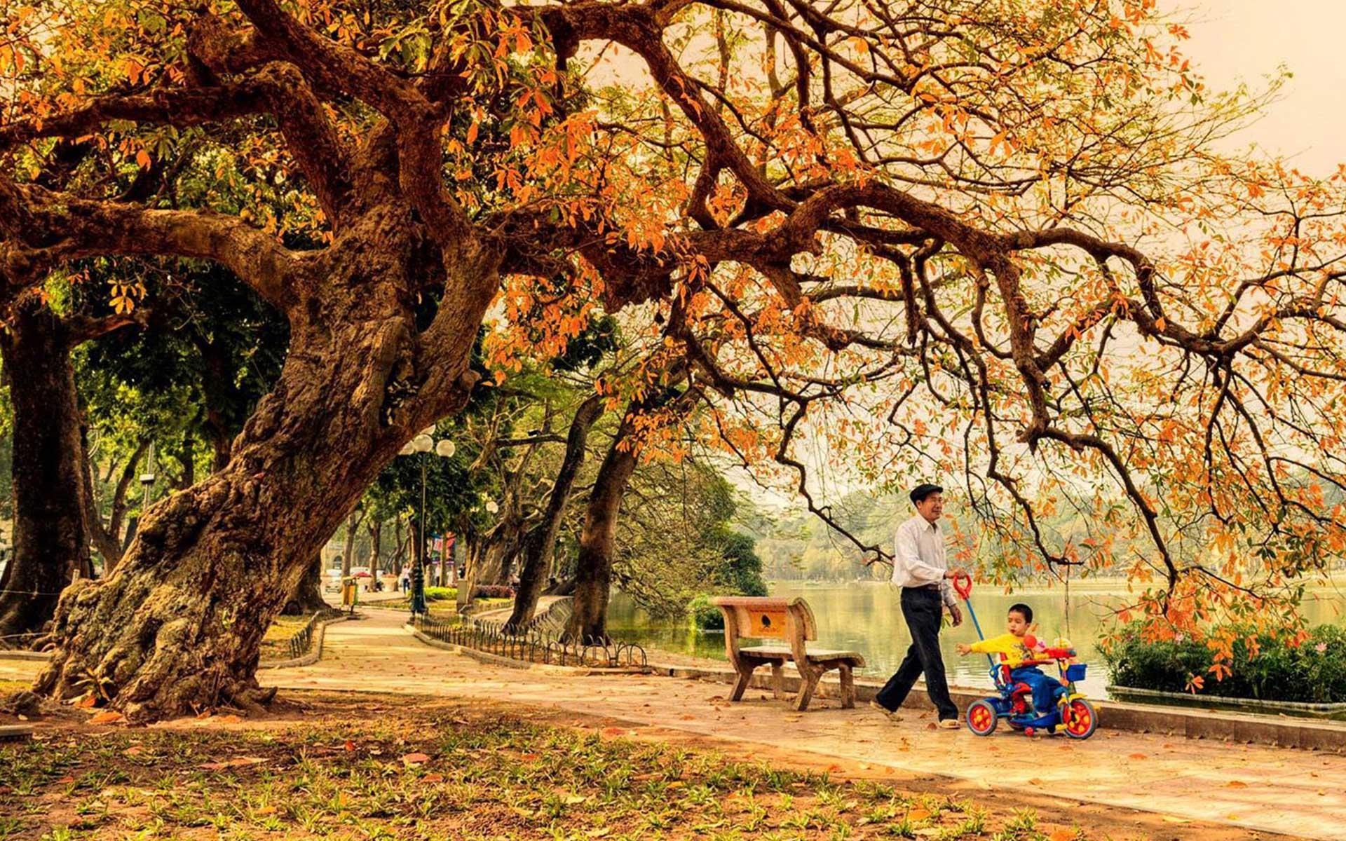 Autumn in Vietnam