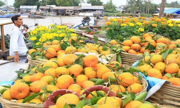 orange on the market