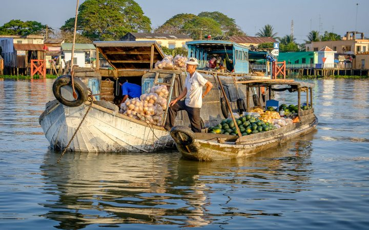 A small boat fulfills with a lot of fruits