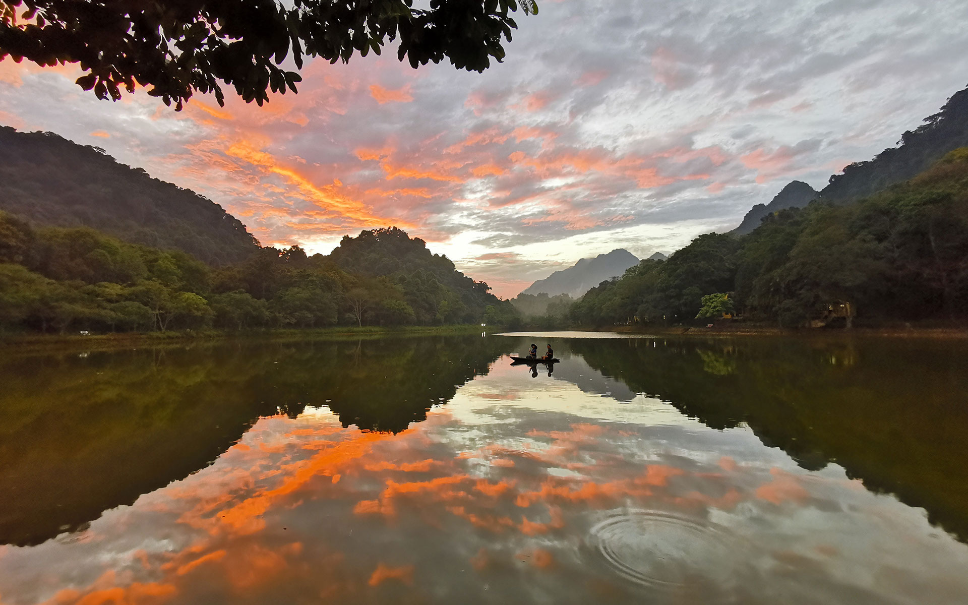 peaceful scenery of Cuc Phuong national park