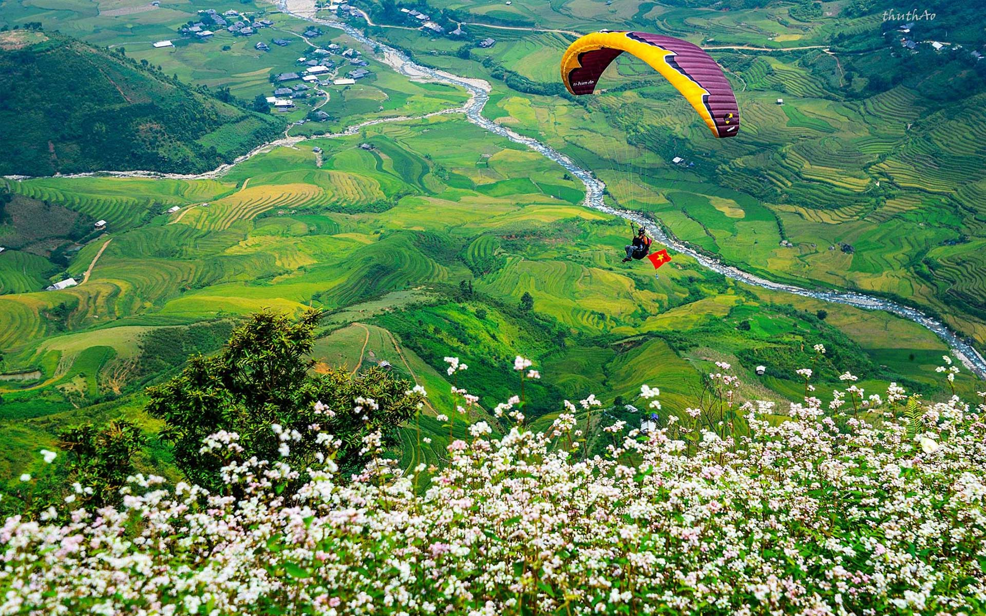 Paragliding on Mu Cang Chai in the harvest season