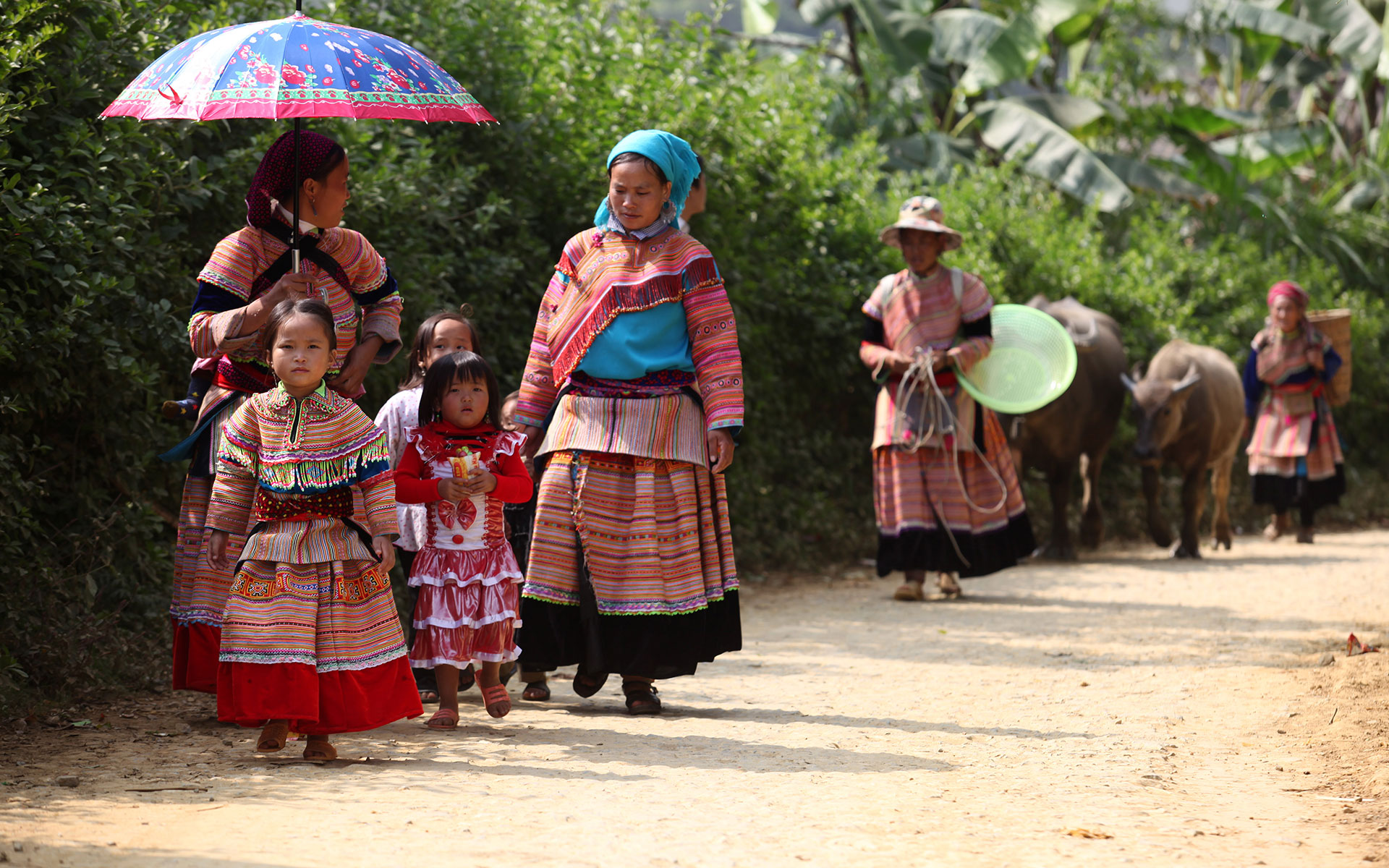 ethnic minority in Northern Vietnam