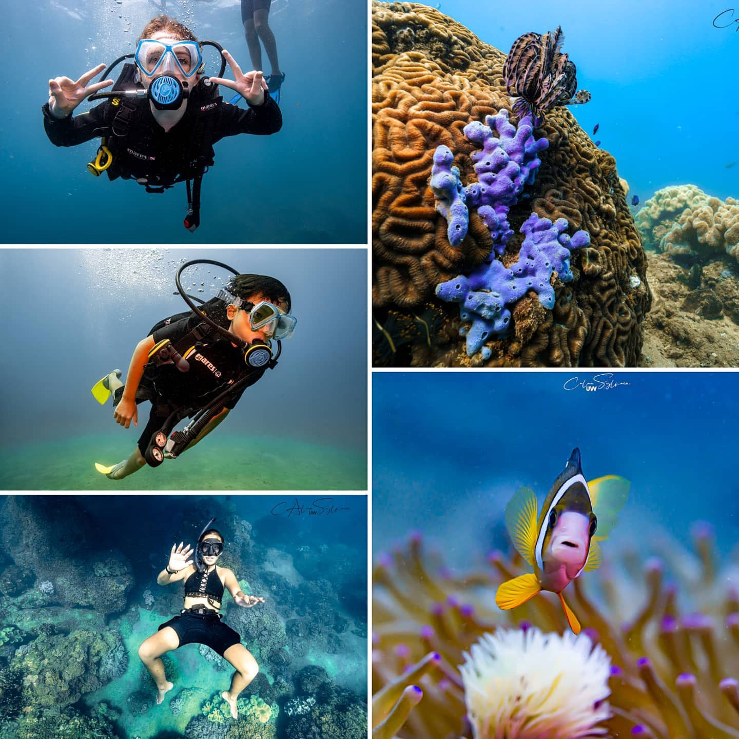 Diving Centers in Hoi An