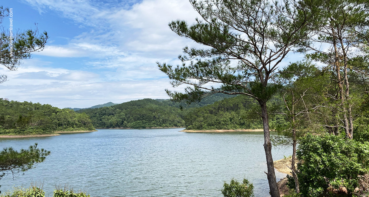 The green pine tree forest dotted with lychee surrounding the lake.