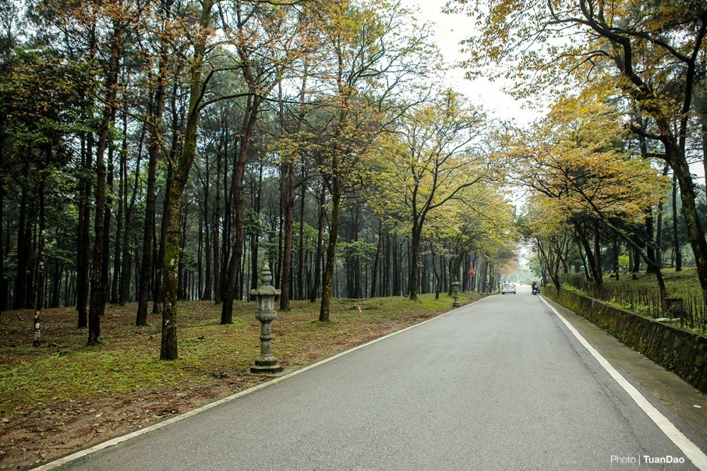 Ba Vi National Park in season of changing leaves