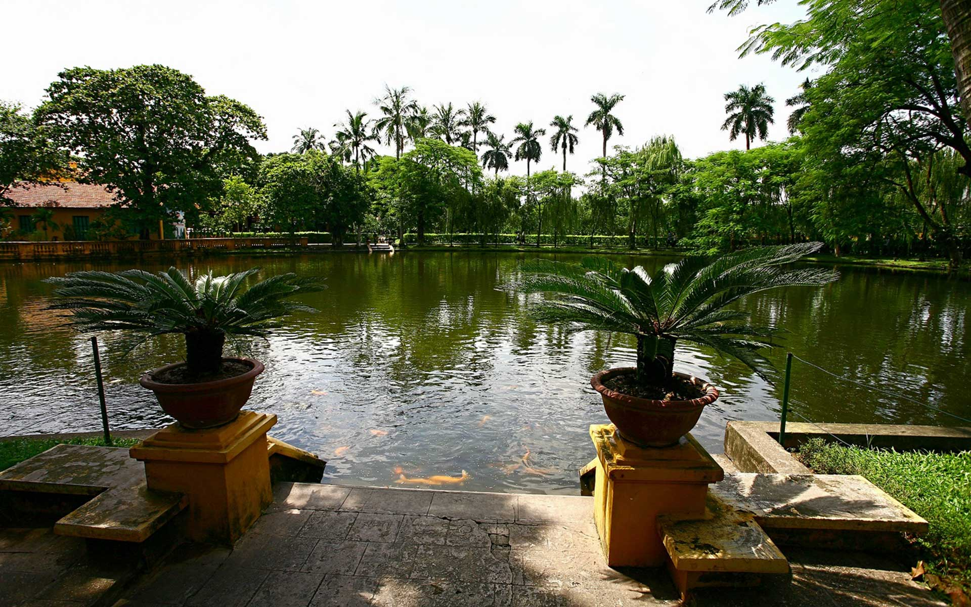 carp pond of ho chi minh Stilt House