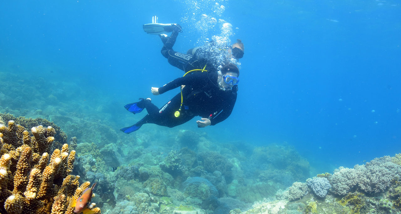 Take a diving trip with Vietnam Explorer Dive Center