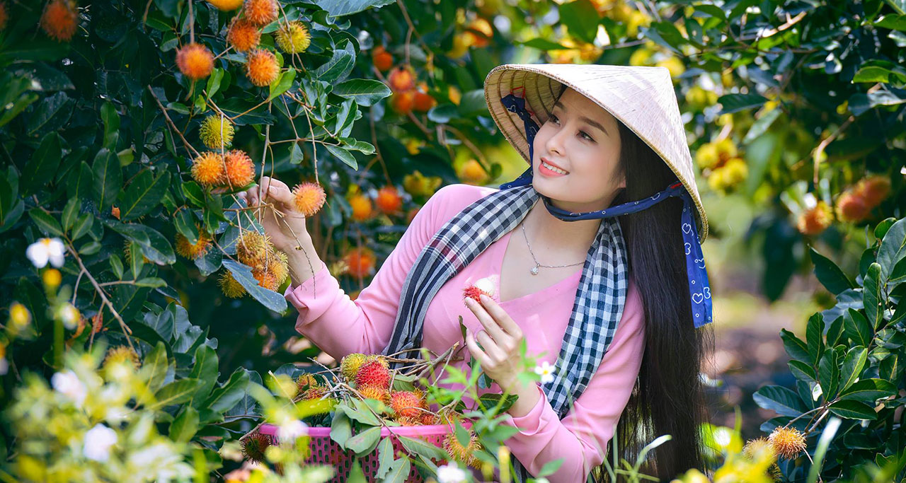 Try fresh tropical fruits in Mekong Delta orchards