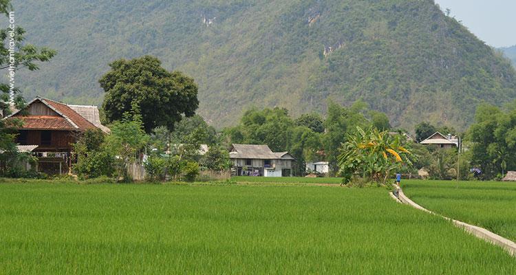 Vietnam-MaiChau-13